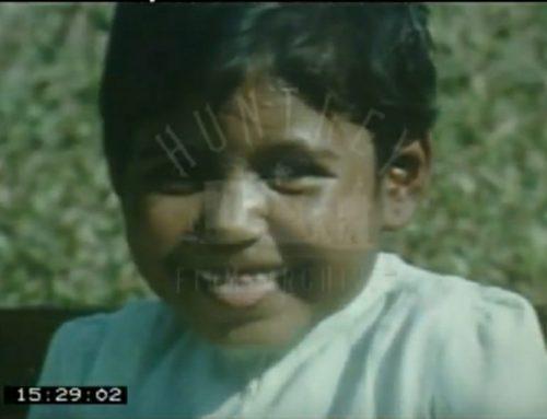 De geboorte van 'Bengaalse curry met een bloemkoolsausje'